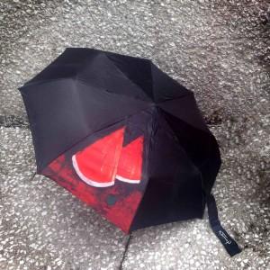 IMG_2516 paraguas sandía